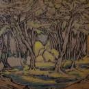 Tomas Harris woodland-drawing_1e