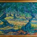 camp-de-mar-olive-grove_1-_publish